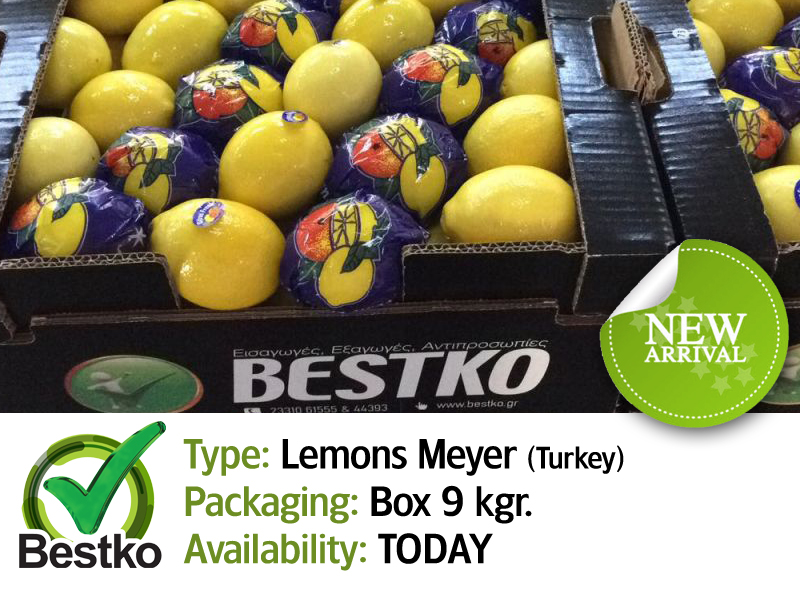 lemons 04