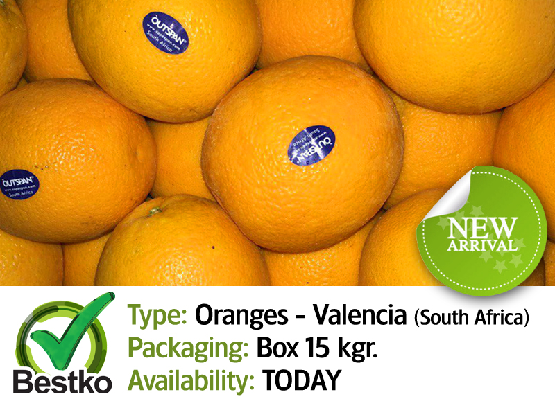 oranges valencia 01