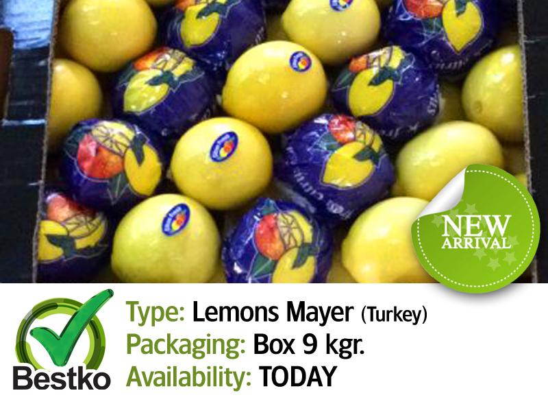 lemons mayer 01