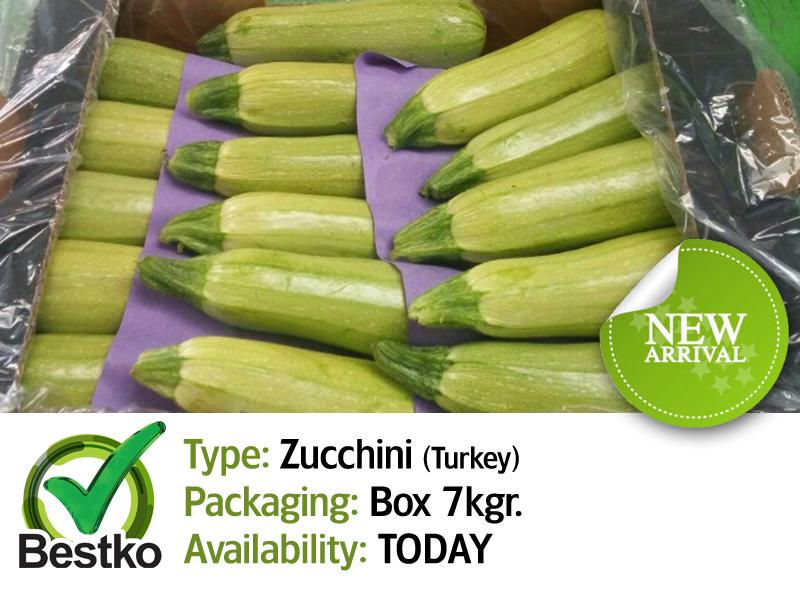 zucchini 01