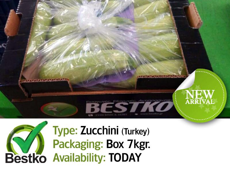 zucchini 02