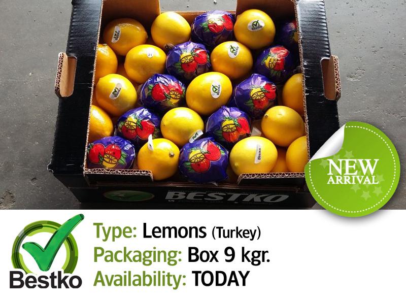 lemons new 01
