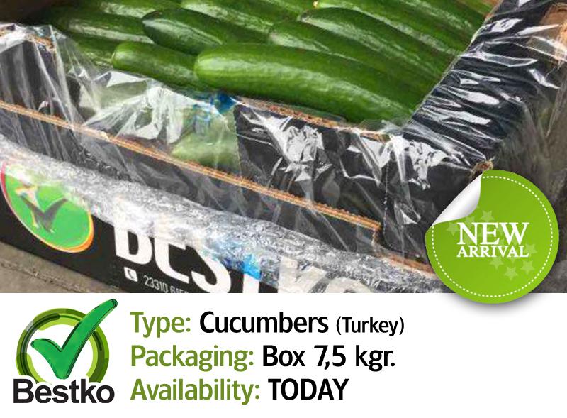 cucumber03